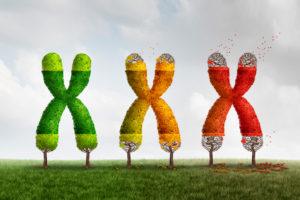 dieta molecolare antiaging